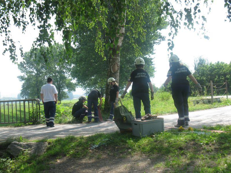 Bachsperrung_tuggen_033_06.2012