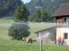 help_uebung_vorderthal_028_07-2010