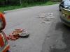 Knoten_und_Vorderthal_005_06.2008