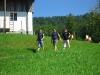 Seilpark_055_08.2012